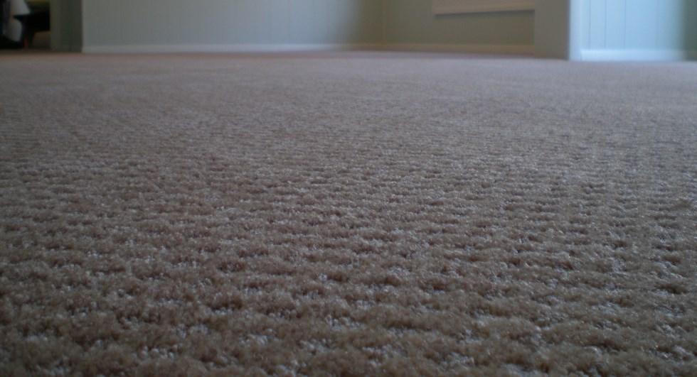 Charlotte Carpet Installation MenzilperdeNet